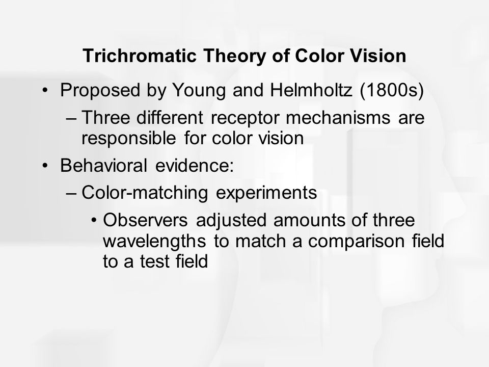 Trichromatic Theory of Color Vision Proposed by Young and Helmholtz (1800s) –Three different receptor mechanisms are responsible for color vision Behavioral evidence: –Color-matching experiments Observers adjusted amounts of three wavelengths to match a comparison field to a test field