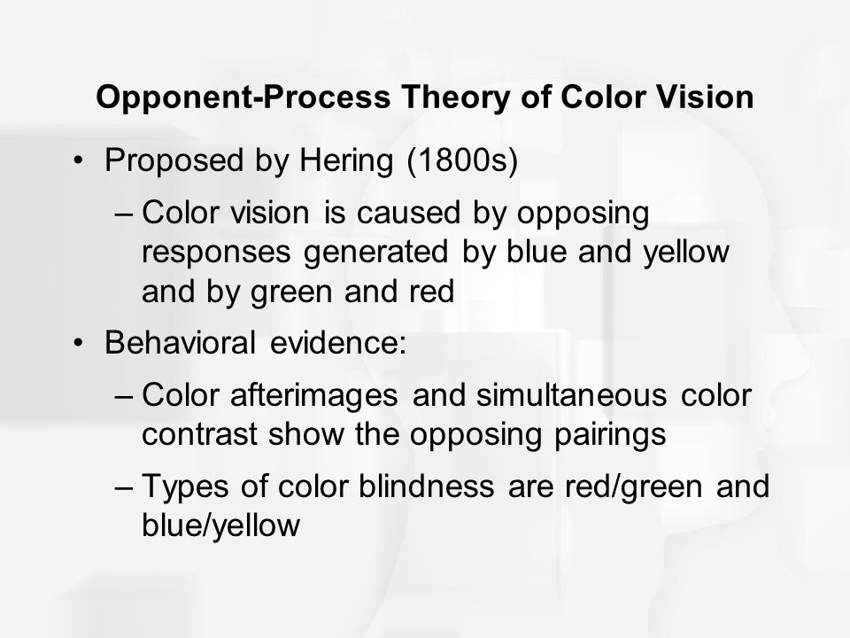 Opponent-Process Theory of Color Vision Proposed by Hering (1800s) –Color vision is caused by opposing responses generated by blue and yellow and by green and red Behavioral evidence: –Color afterimages and simultaneous color contrast show the opposing pairings –Types of color blindness are red/green and blue/yellow