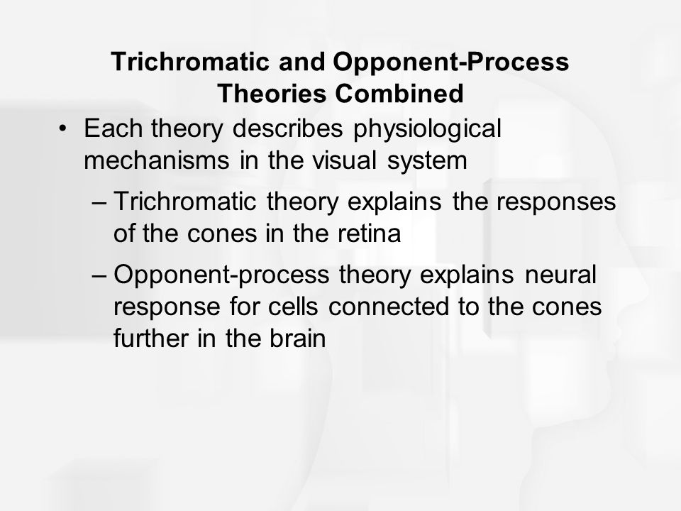 Trichromatic and Opponent-Process Theories Combined Each theory describes physiological mechanisms in the visual system –Trichromatic theory explains the responses of the cones in the retina –Opponent-process theory explains neural response for cells connected to the cones further in the brain
