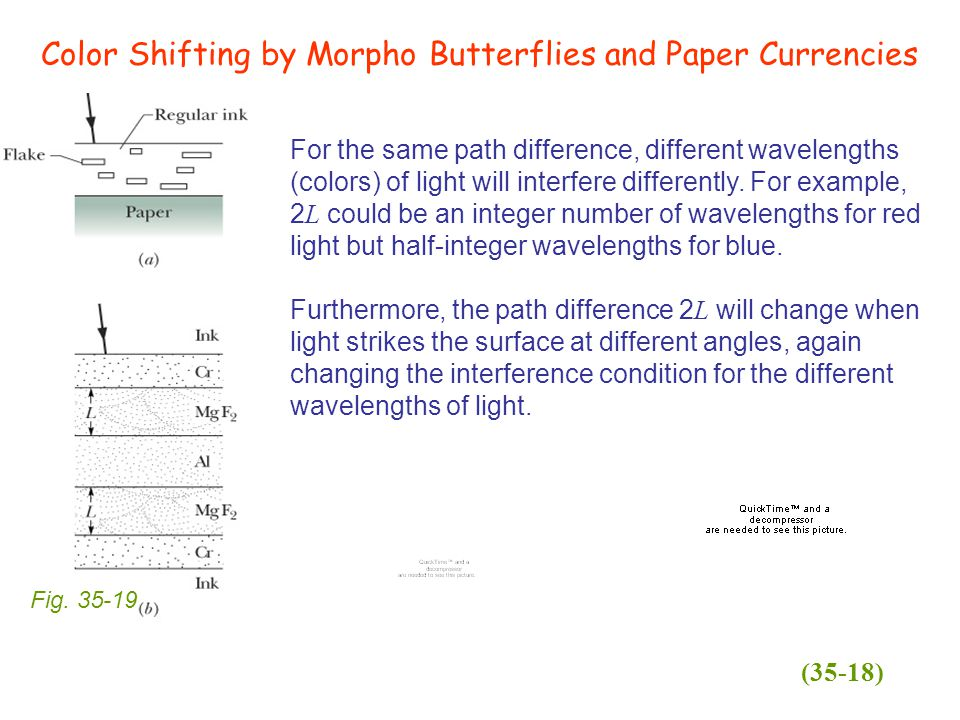 Color Shifting by Morpho Butterflies and Paper Currencies Fig.