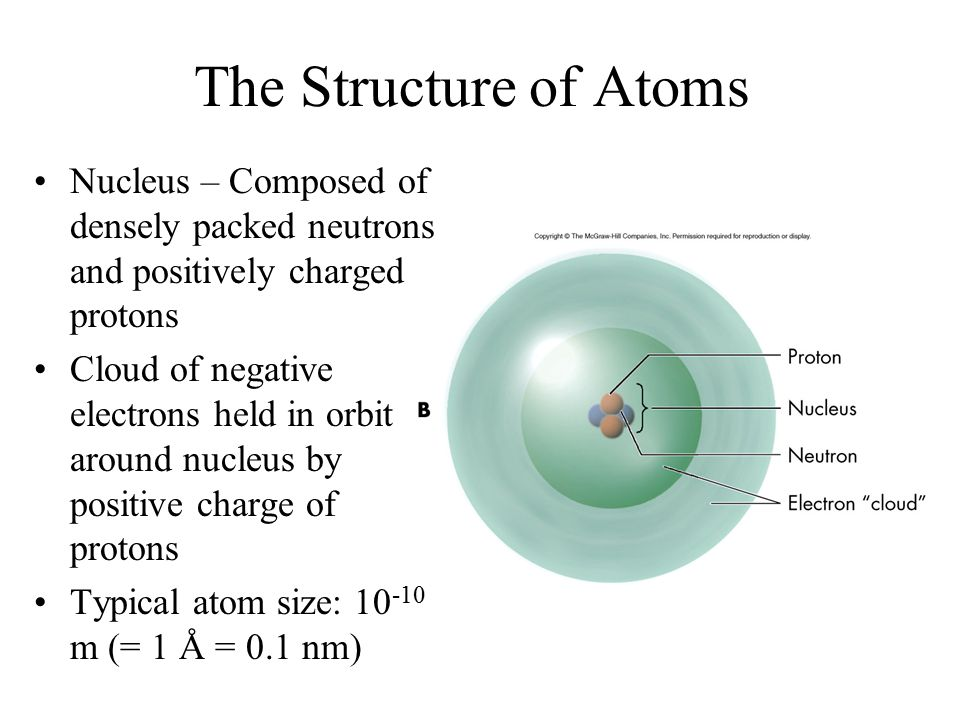 The Structure of Atoms Nucleus – Composed of densely packed neutrons and positively charged protons Cloud of negative electrons held in orbit around n