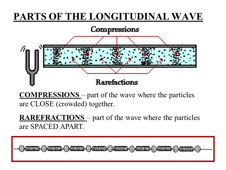 PARTS OF THE LONGITUDINAL WAVE COMPRESSIONS – part of the wave where the particles are CLOSE (crowded) together.