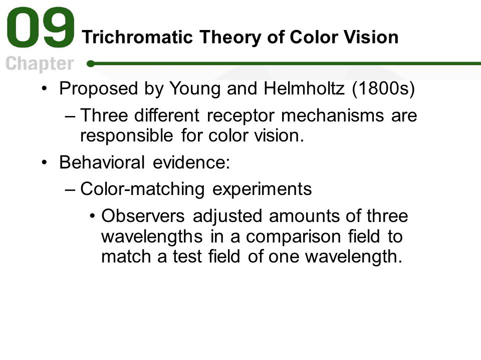 Trichromatic Theory of Color Vision Proposed by Young and Helmholtz (1800s) –Three different receptor mechanisms are responsible for color vision. Beh