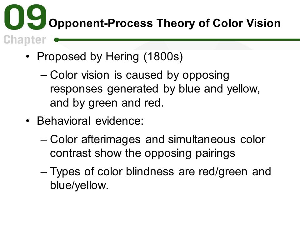 Opponent-Process Theory of Color Vision Proposed by Hering (1800s) –Color vision is caused by opposing responses generated by blue and yellow, and by green and red.