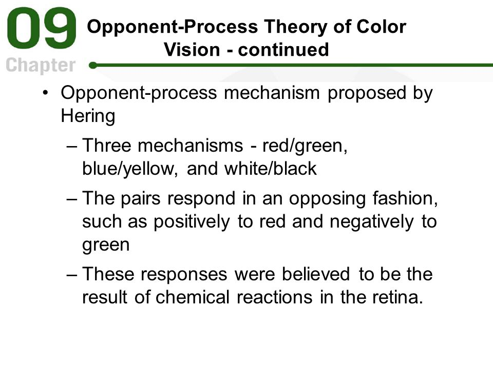 Opponent-Process Theory of Color Vision - continued Opponent-process mechanism proposed by Hering –Three mechanisms - red/green, blue/yellow, and white/black –The pairs respond in an opposing fashion, such as positively to red and negatively to green –These responses were believed to be the result of chemical reactions in the retina.