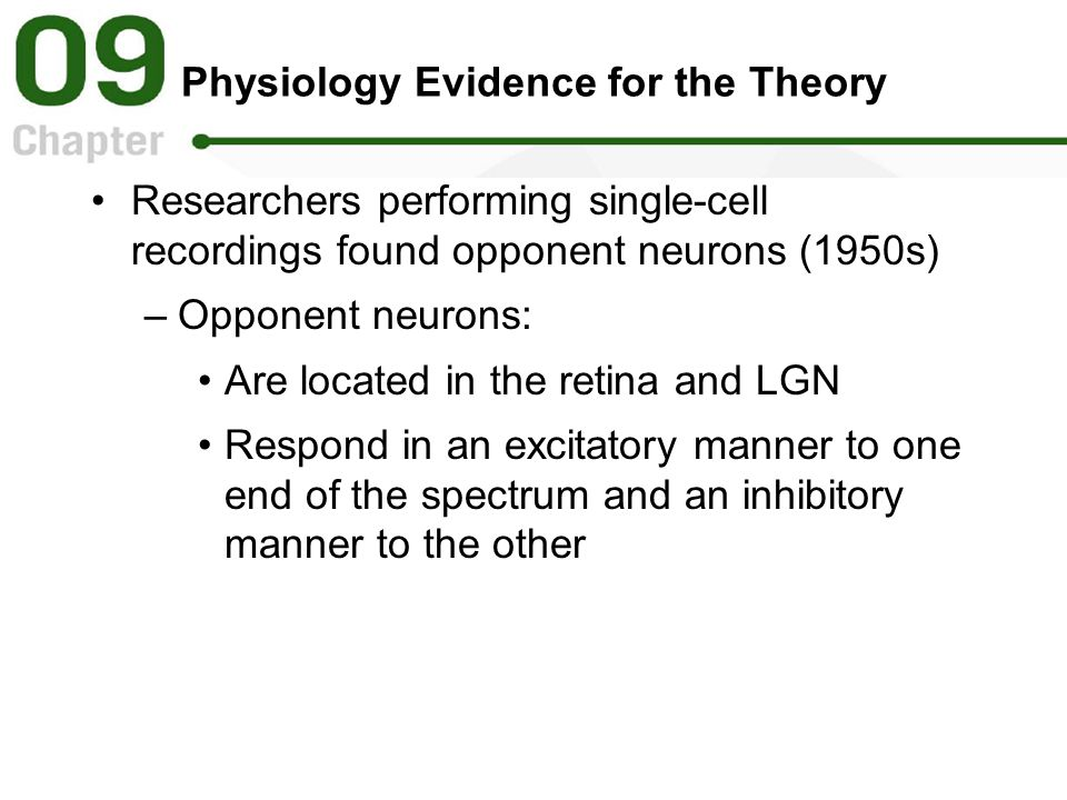 Physiology Evidence for the Theory Researchers performing single-cell recordings found opponent neurons (1950s) –Opponent neurons: Are located in the retina and LGN Respond in an excitatory manner to one end of the spectrum and an inhibitory manner to the other