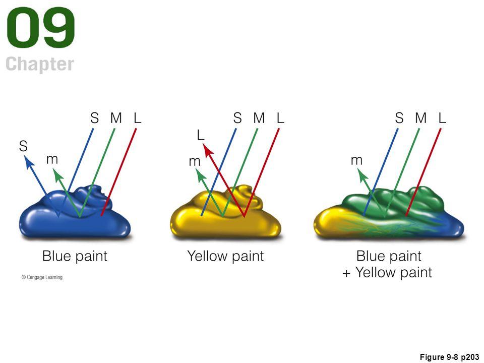 Figure 9-8 p203