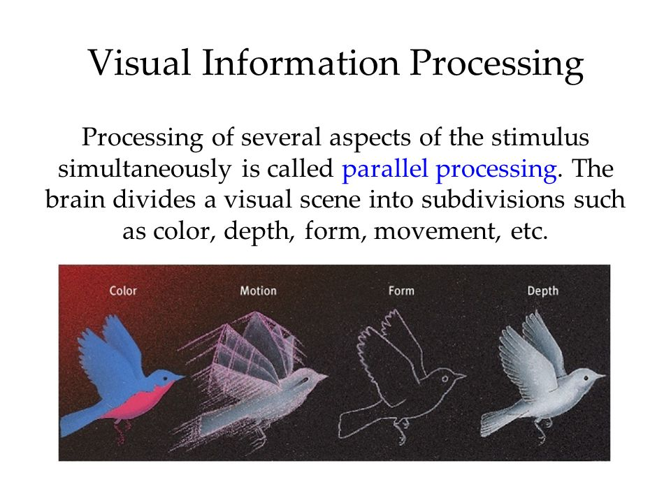 Visual Information Processing Processing of several aspects of the stimulus simultaneously is called parallel processing.