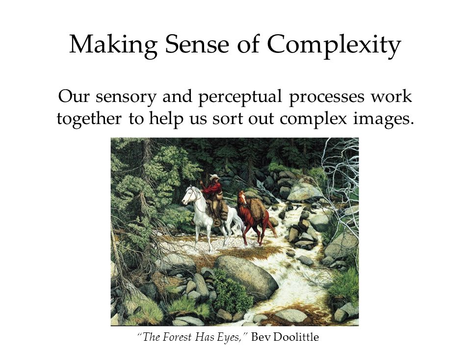 Our sensory and perceptual processes work together to help us sort out complex images.