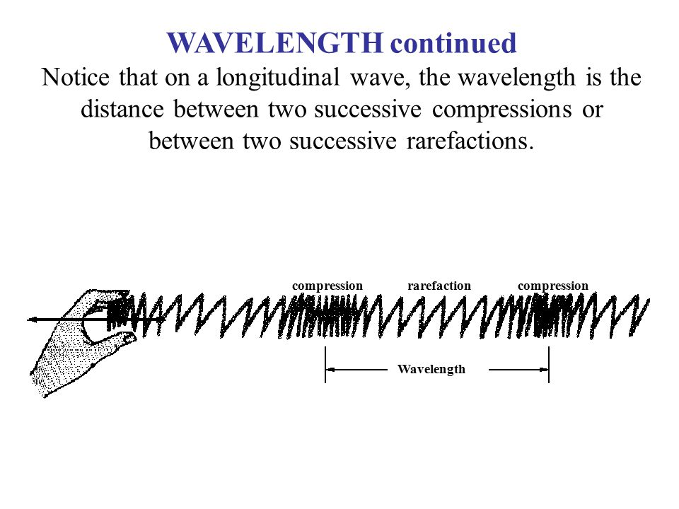 WAVELENGTH continued Notice that on a longitudinal wave, the wavelength is the distance between two successive compressions or between two successive rarefactions.