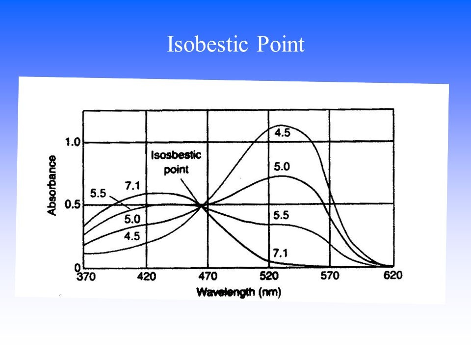 Isobestic Point