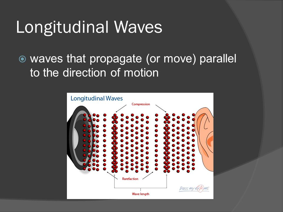 Longitudinal Waves  waves that propagate (or move) parallel to the direction of motion