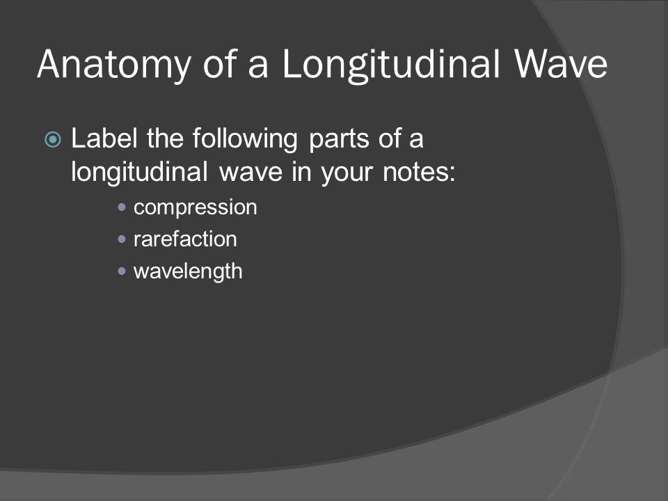 Anatomy of a Longitudinal Wave  Label the following parts of a longitudinal wave in your notes: compression rarefaction wavelength