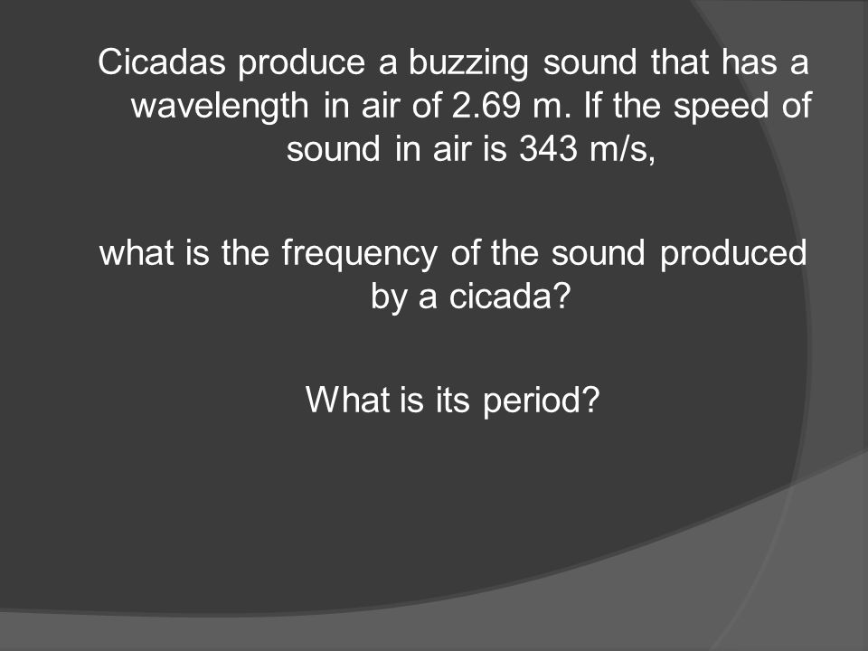 Cicadas produce a buzzing sound that has a wavelength in air of 2.69 m.