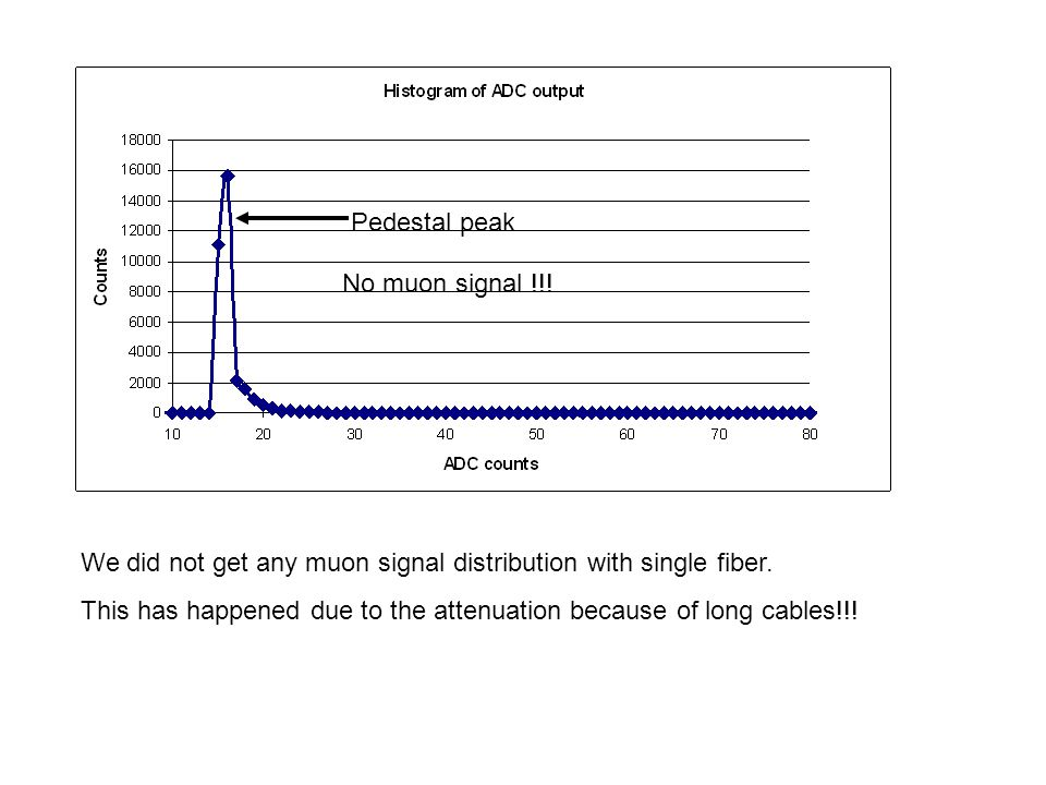 We did not get any muon signal distribution with single fiber.