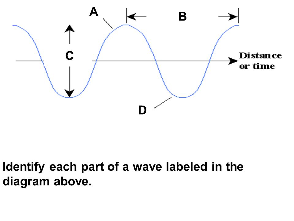 A Identify each part of a wave labeled in the diagram above. B C D