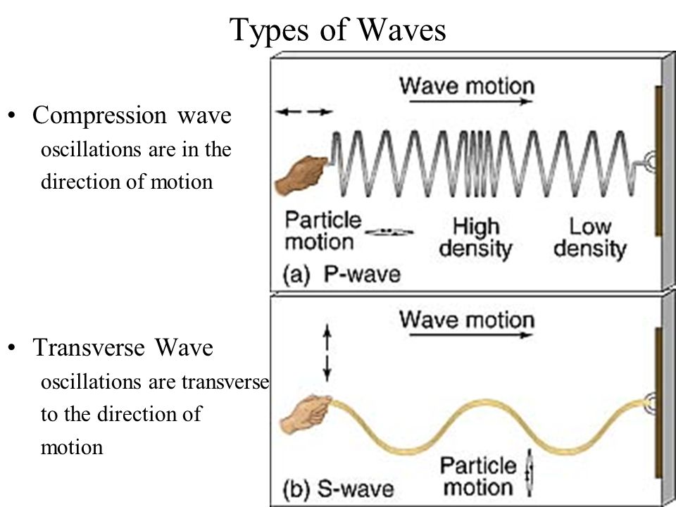 Physical Examples Compression wave –sound waves –earthquake P-waves Transverse Wave –water waves –earthquake S-waves –light waves