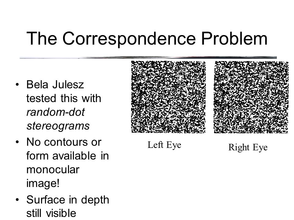 The Correspondence Problem Bela Julesz tested this with random-dot stereograms No contours or form available in monocular image.