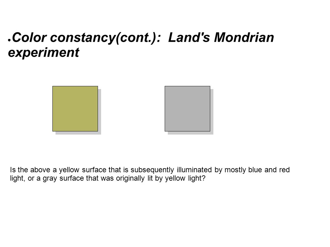 ● Color constancy(cont.): Land s Mondrian experiment Is the above a yellow surface that is subsequently illuminated by mostly blue and red light, or a gray surface that was originally lit by yellow light