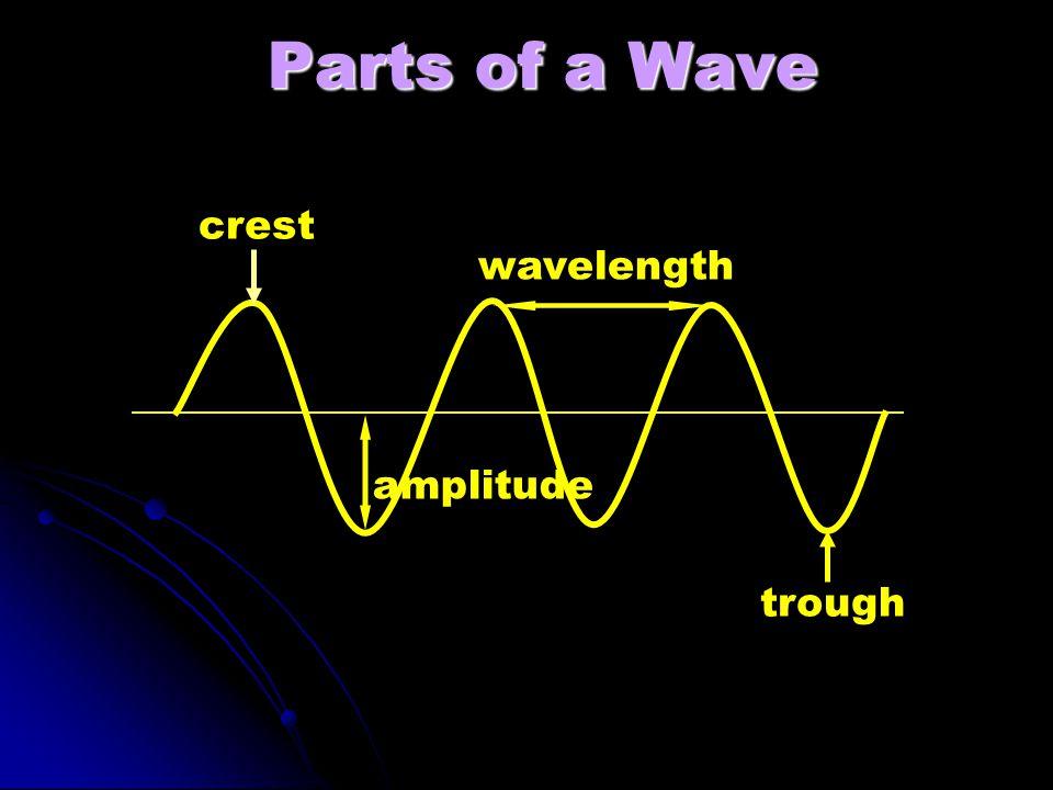trough amplitude crest Parts of a Wave wavelength