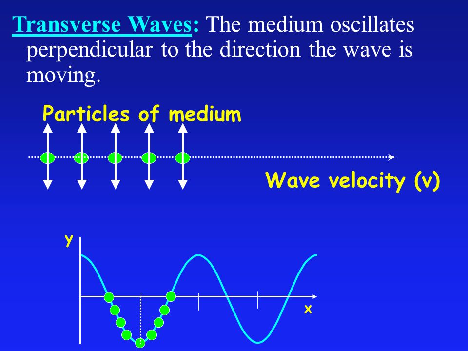 Transverse Waves: The medium oscillates perpendicular to the direction the wave is moving.