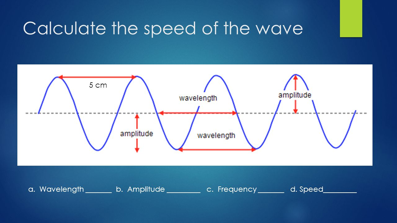 Calculate the speed of the wave 5 cm a. Wavelength _______ b.