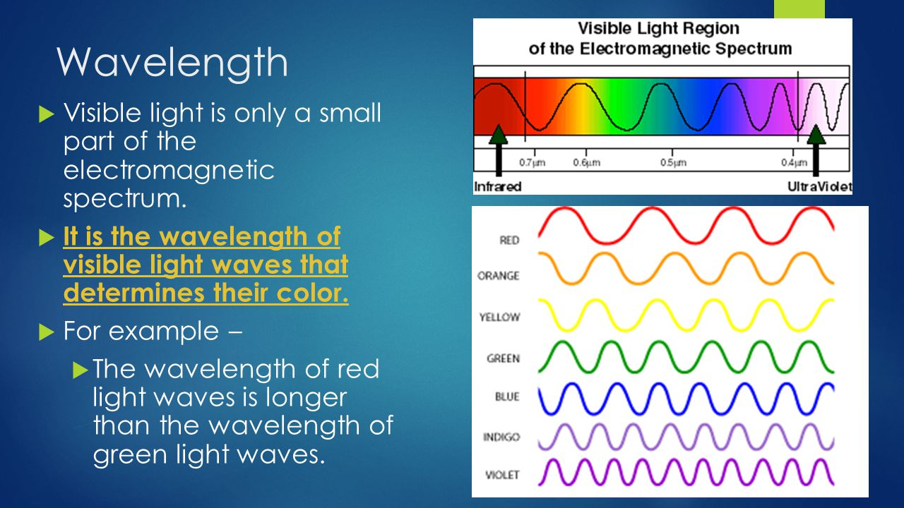 Wavelength  Visible light is only a small part of the electromagnetic spectrum.
