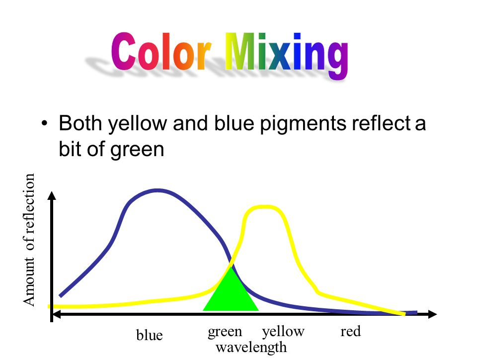 Both yellow and blue pigments reflect a bit of green wavelength Amount of reflection blue greenyellowred