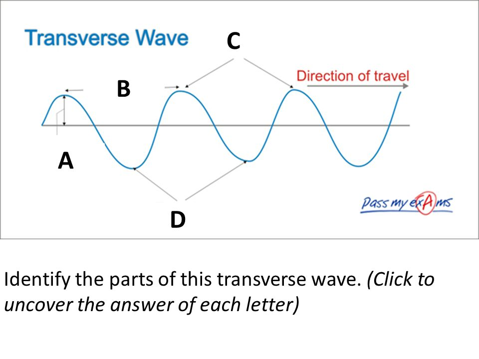Identify the parts of this transverse wave. (Click to uncover the answer of each letter) A A B C D
