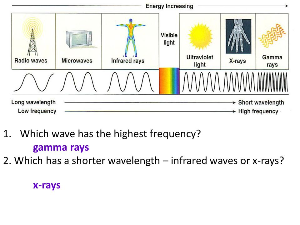1.Which wave has the highest frequency? gamma rays 2. Which has a shorter wavelength – infrared waves or x-rays? x-rays
