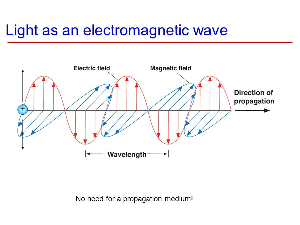 Maxwell came up with equations that showed that the electric and magnetic fields could wave and there was light!