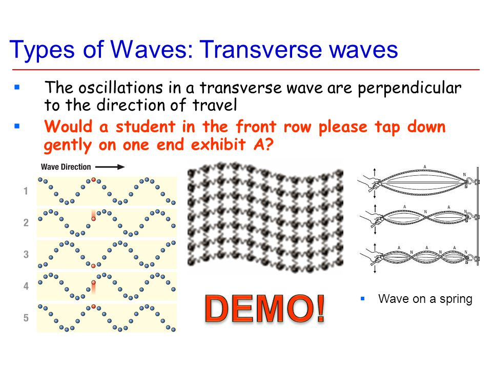 Types of Waves: Transverse waves  The oscillations in a transverse wave are perpendicular to the direction of travel  Would a student in the front row please tap down gently on one end exhibit A.