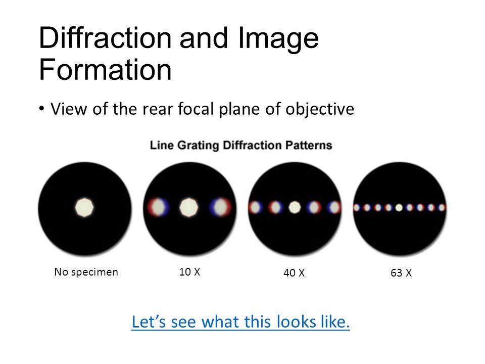Diffraction and Image Formation View of the rear focal plane of objective No specimen10 X 40 X 63 X Let's see what this looks like.
