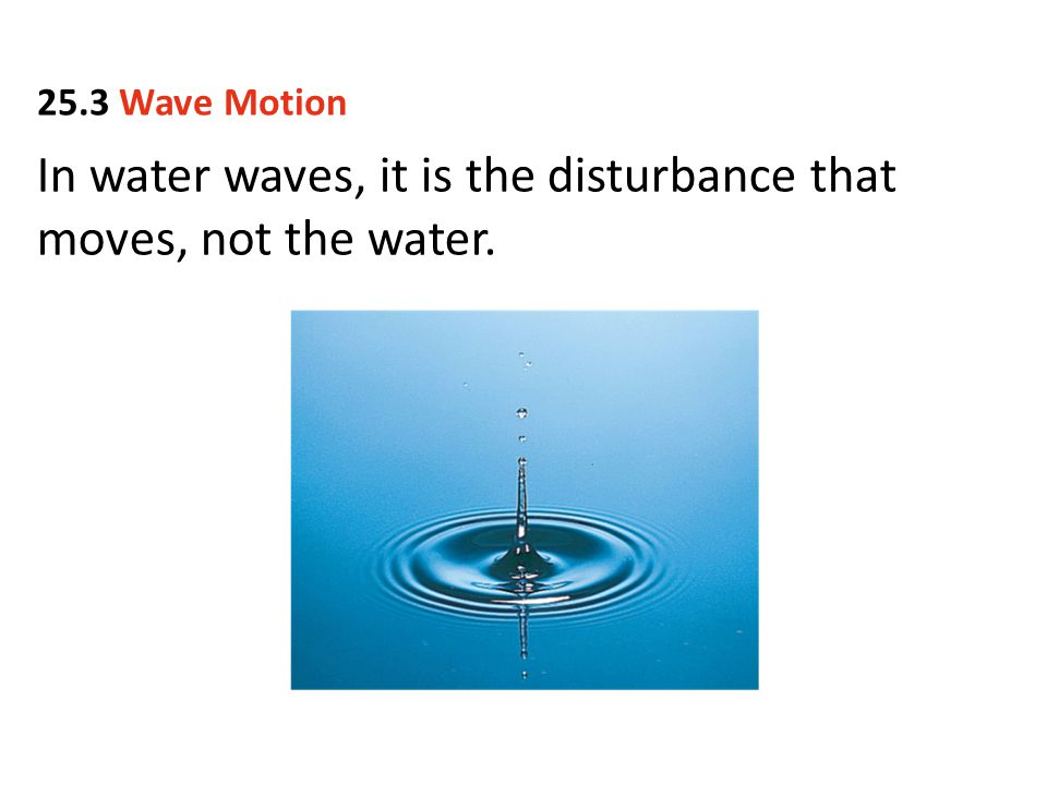 In water waves, it is the disturbance that moves, not the water. 25.3 Wave Motion