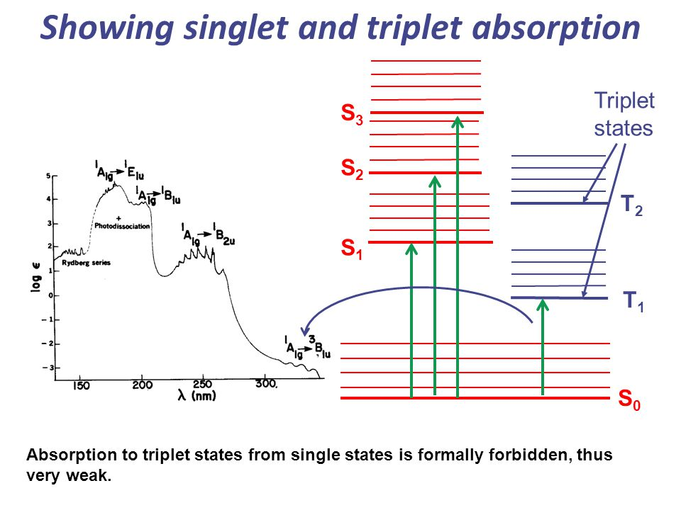 T1T1 T2T2 Triplet states S2S2 S1S1 S0S0 Showing singlet and triplet absorption S3S3 Absorption to triplet states from single states is formally forbid