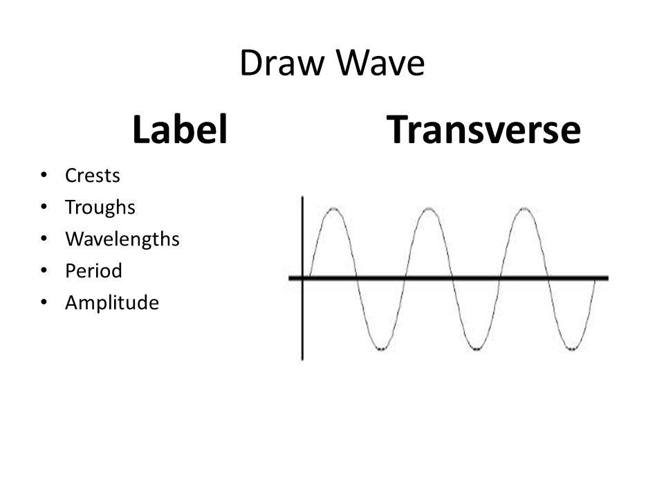 Draw Wave Label Crests Troughs Wavelengths Period Amplitude Transverse