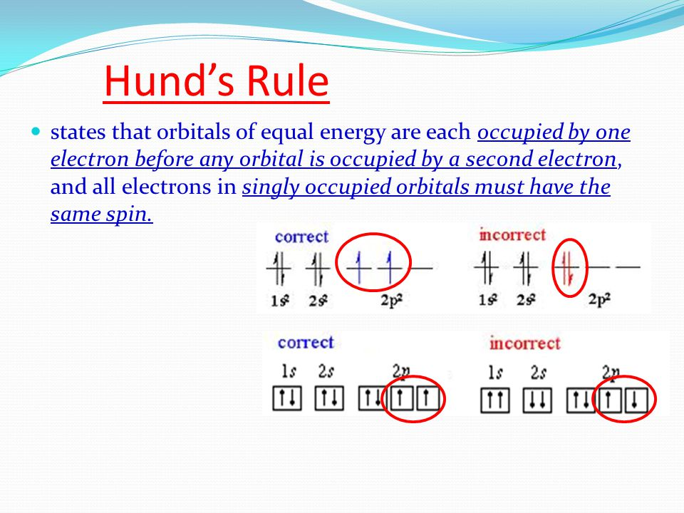 Hund's Rule states that orbitals of equal energy are each occupied by one electron before any orbital is occupied by a second electron, and all electrons in singly occupied orbitals must have the same spin.