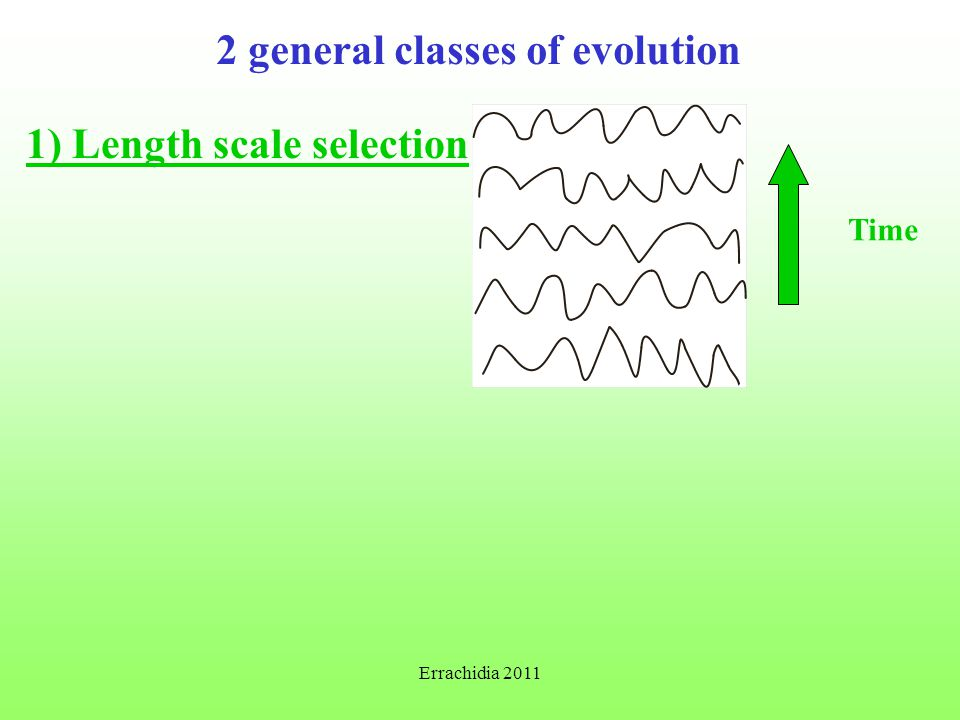2 general classes of evolution 1) Length scale selection Time Errachidia 2011