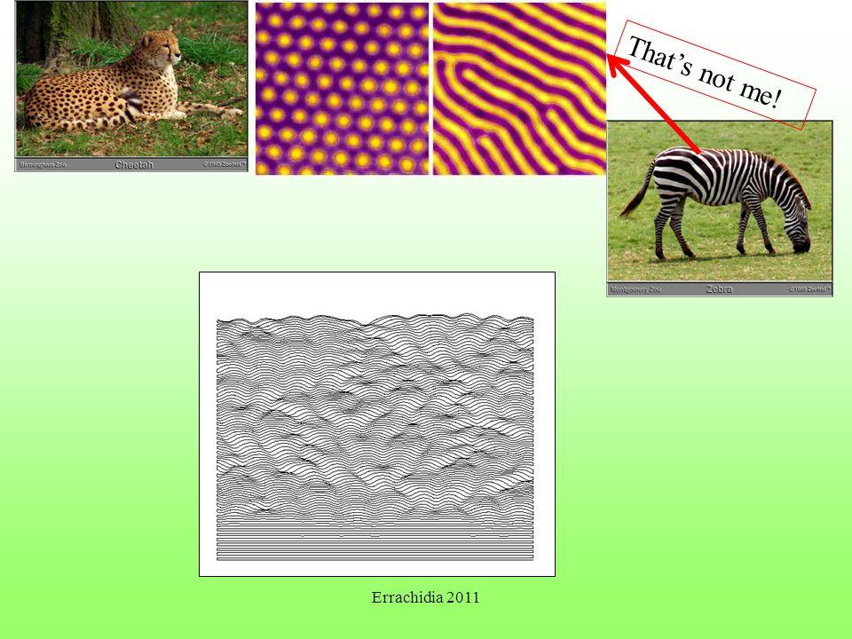 Dunes (Andreotti et al. Nature, 457 (2009)) Errachidia 2011