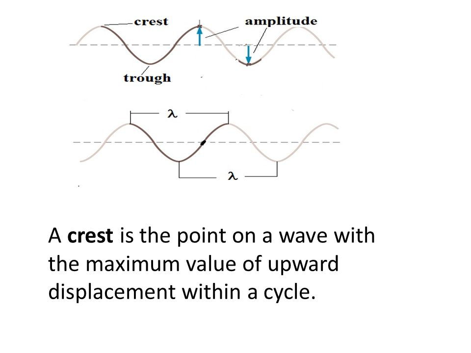A crest is the point on a wave with the maximum value of upward displacement within a cycle.