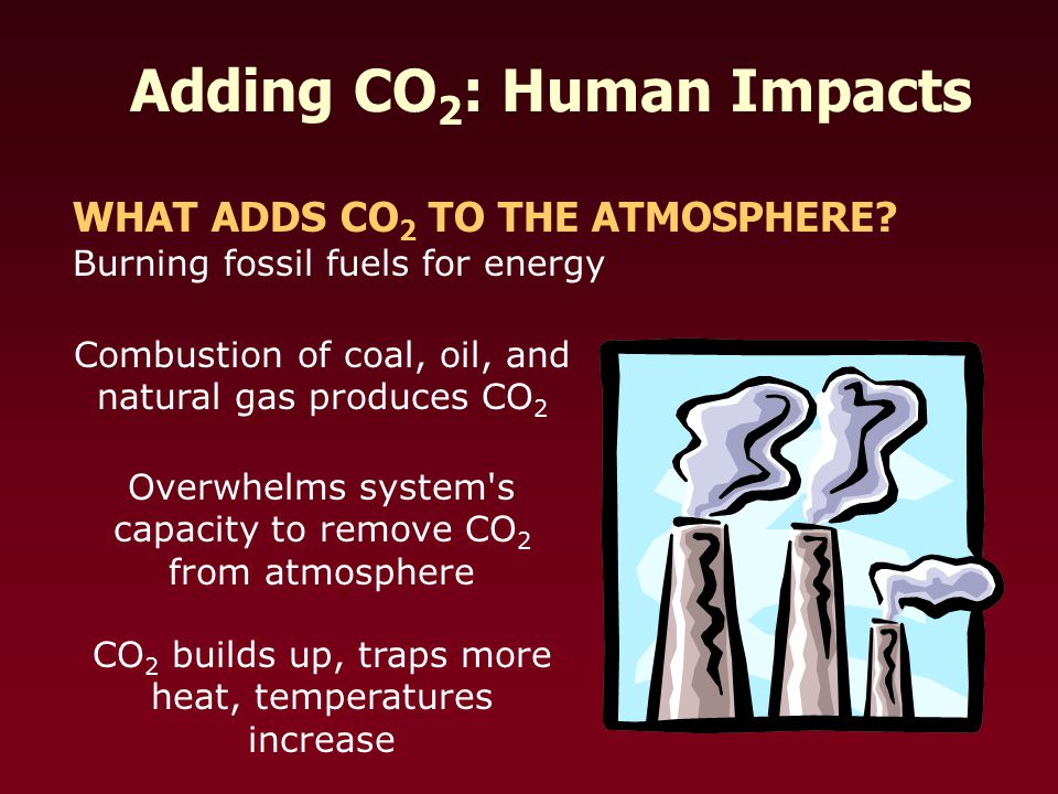 Adding CO 2 : Human Impacts WHAT ADDS CO 2 TO THE ATMOSPHERE.