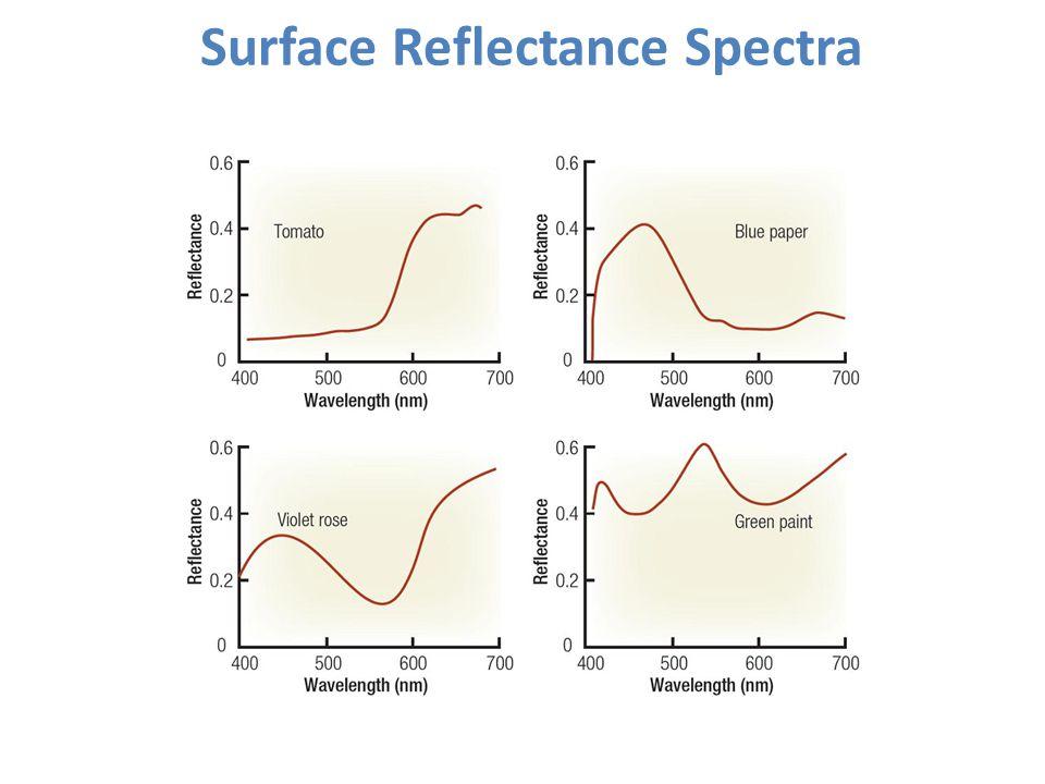 Surface Reflectance Spectra