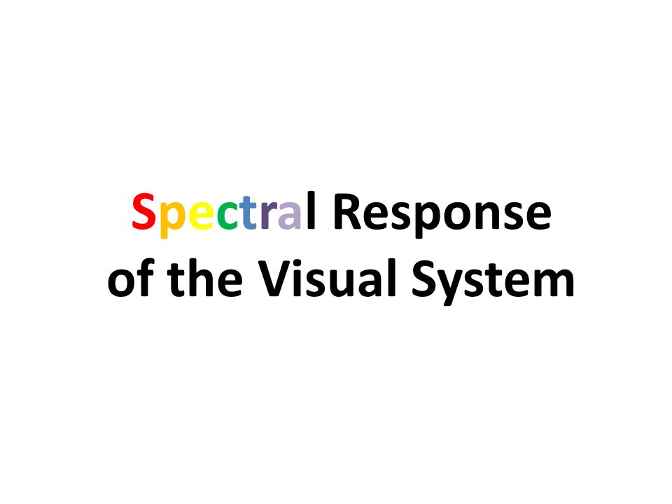 Spectral Response of the Visual System