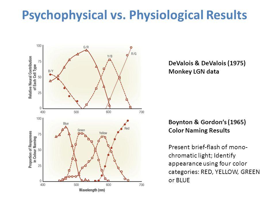 Psychophysical vs. Physiological Results DeValois & DeValois (1975) Monkey LGN data Boynton & Gordon's (1965) Color Naming Results Present brief-flash