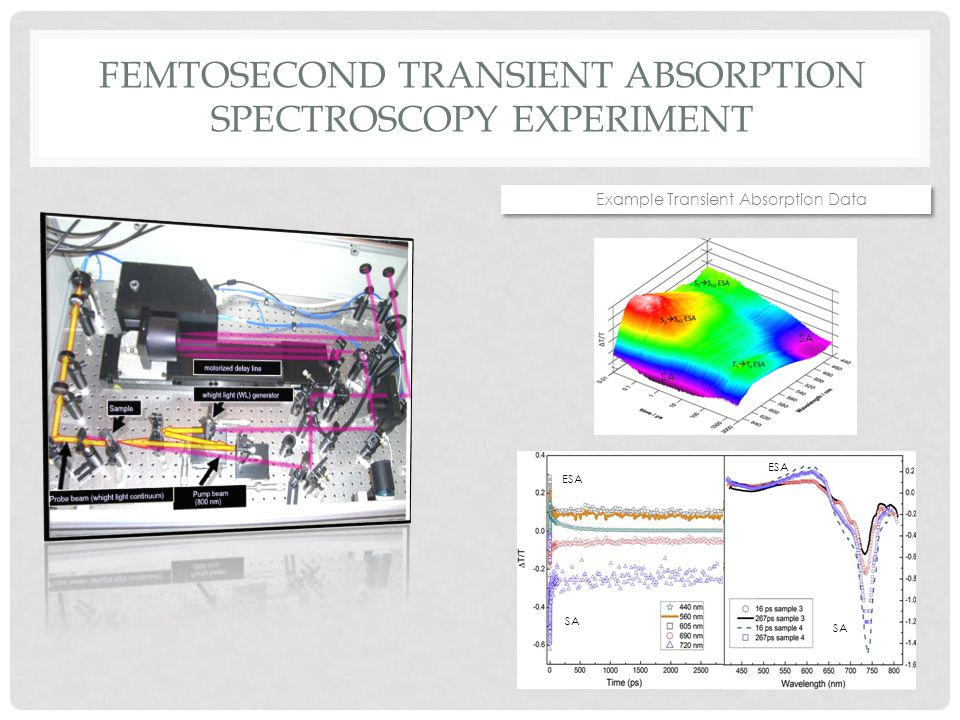 FEMTOSECOND TRANSIENT ABSORPTION SPECTROSCOPY EXPERIMENT Example Transient Absorption Data SA ESA SA