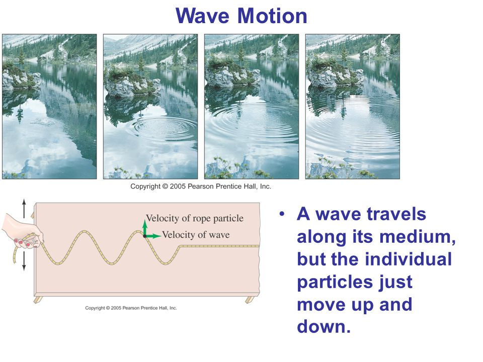 Wave Motion A wave travels along its medium, but the individual particles just move up and down.