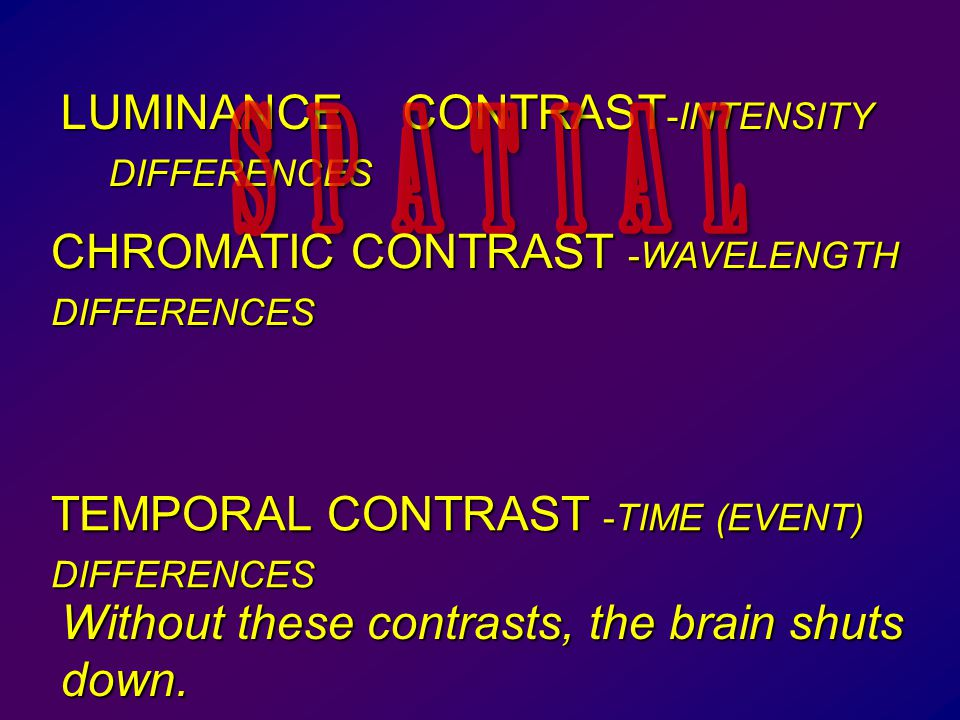 LUMINANCE CONTRAST -INTENSITY DIFFERENCES Without these contrasts, the brain shuts down.