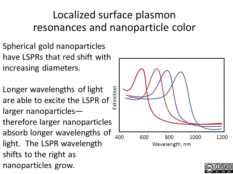 Localized surface plasmon resonances and nanoparticle color Spherical gold nanoparticles have LSPRs that red shift with increasing diameters.