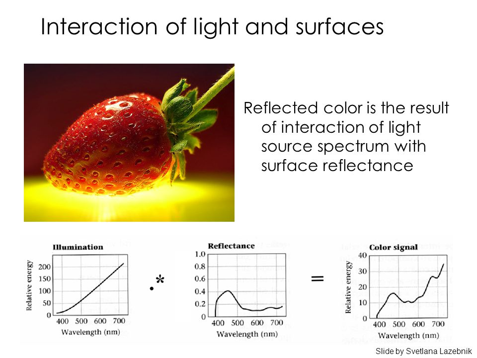 Interaction of light and surfaces Reflected color is the result of interaction of light source spectrum with surface reflectance Slide by Svetlana Lazebnik