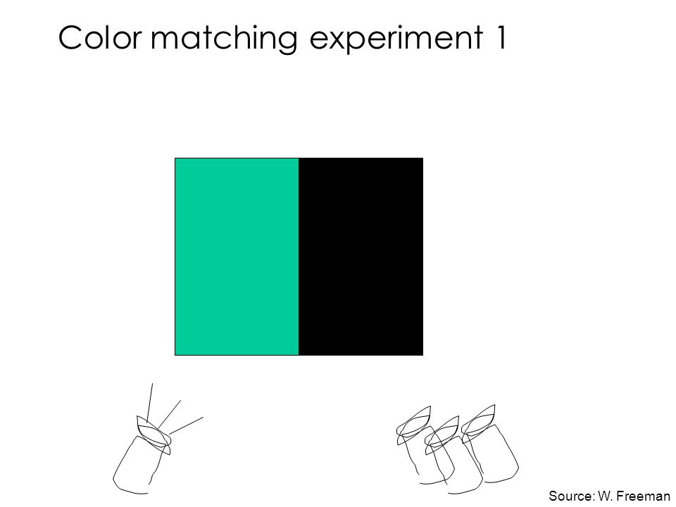 Color matching experiment 1 Source: W. Freeman